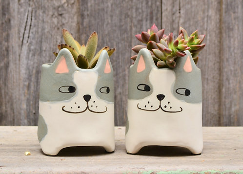 Quirky Small Grey and White 'Bentley' Cat Planter