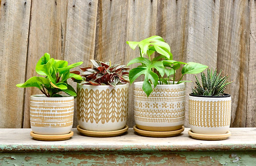Ceramic Textured White and Beige Patterned Planters Plant Pot with Saucer