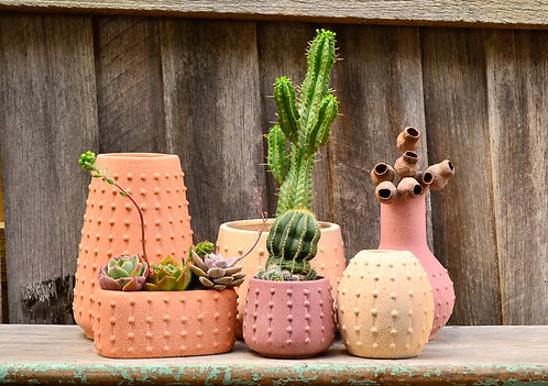Modern Textured Ceramic Sea Urchin Inspired Pot Planters, Vase and Vessel