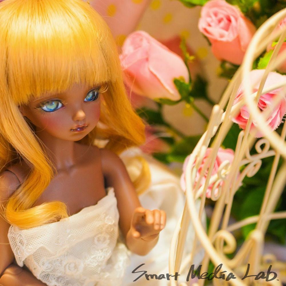 Seminar_Doll2