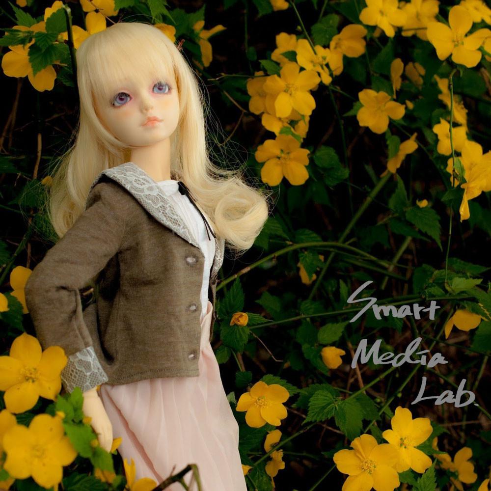 Seminar_Doll1