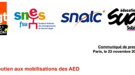 1er décembre : grève des AED. Rassemblement à 11h30 devant la DSDEN (quai Dujardin)