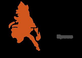 Tamer-logo.png