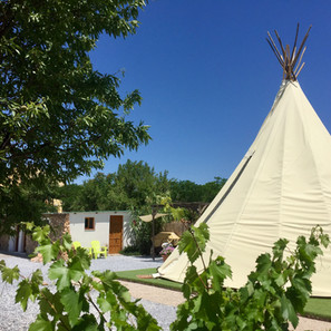 Many Mountains teepee & private bathroom