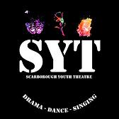 SYT Logo.png