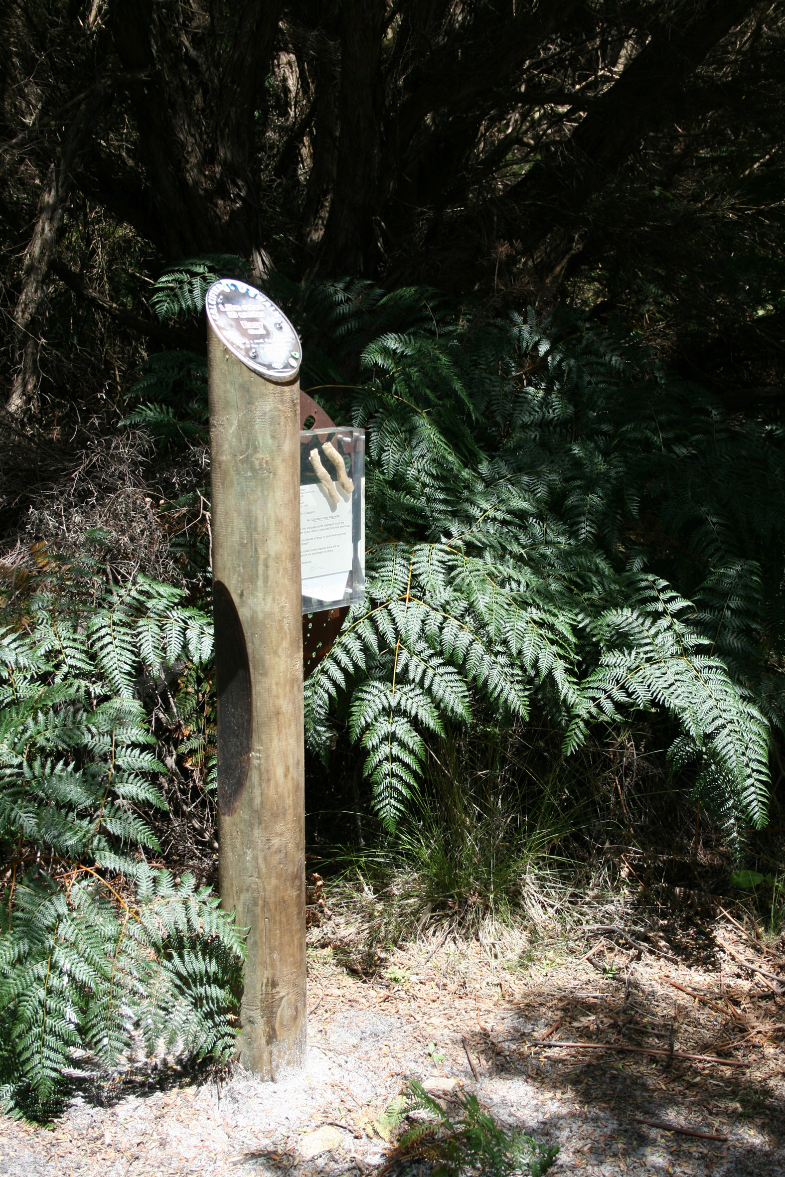 King Island grazing trails