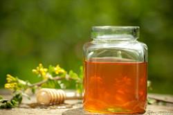 Honey-and-Clover 2