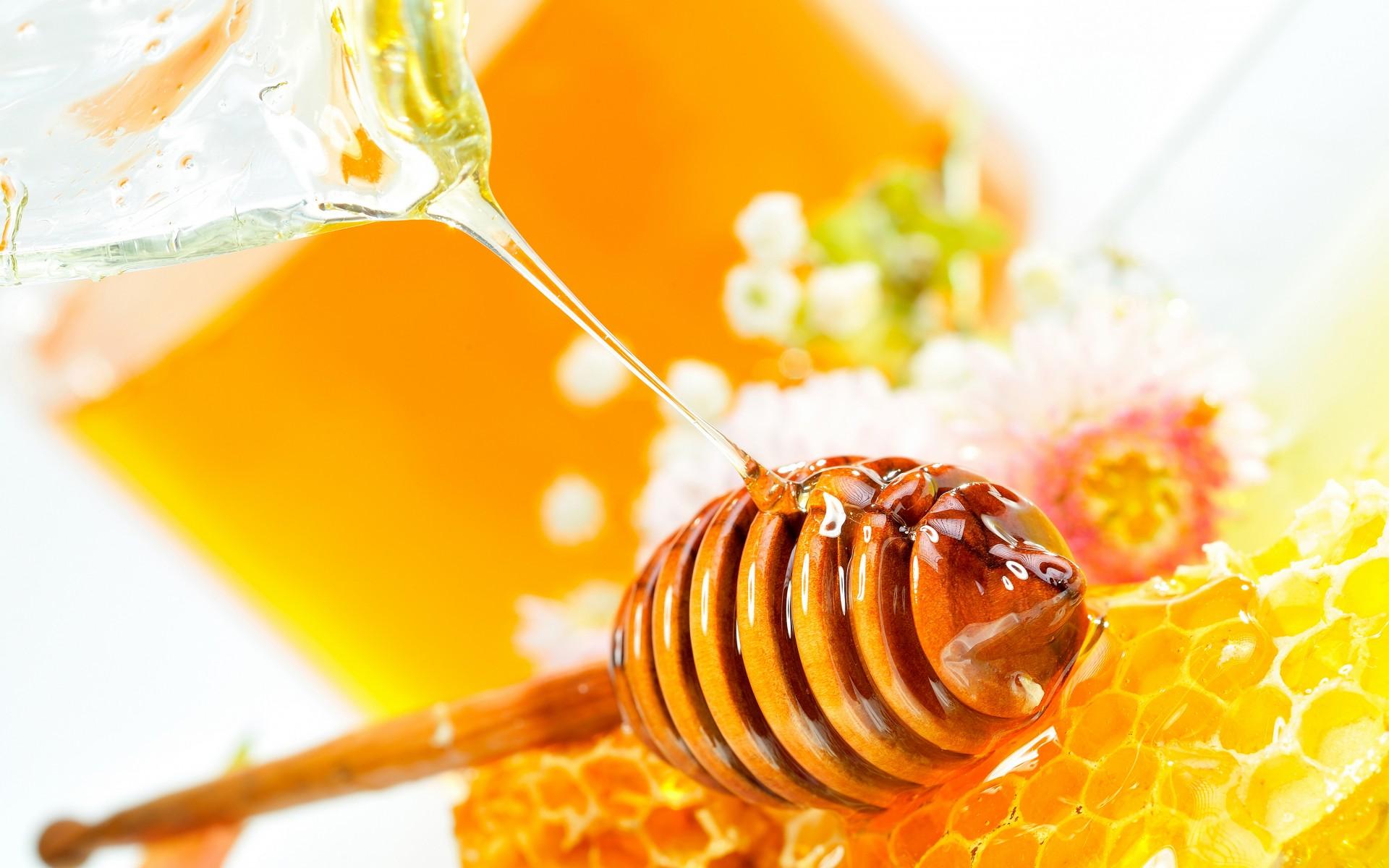 Main Pain Page Honey 2