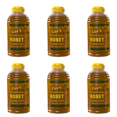 24 oz Raw Clover Honey Half Case