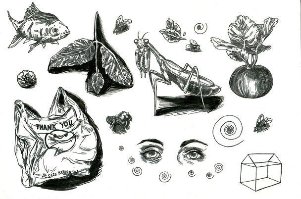 found objects.jpg