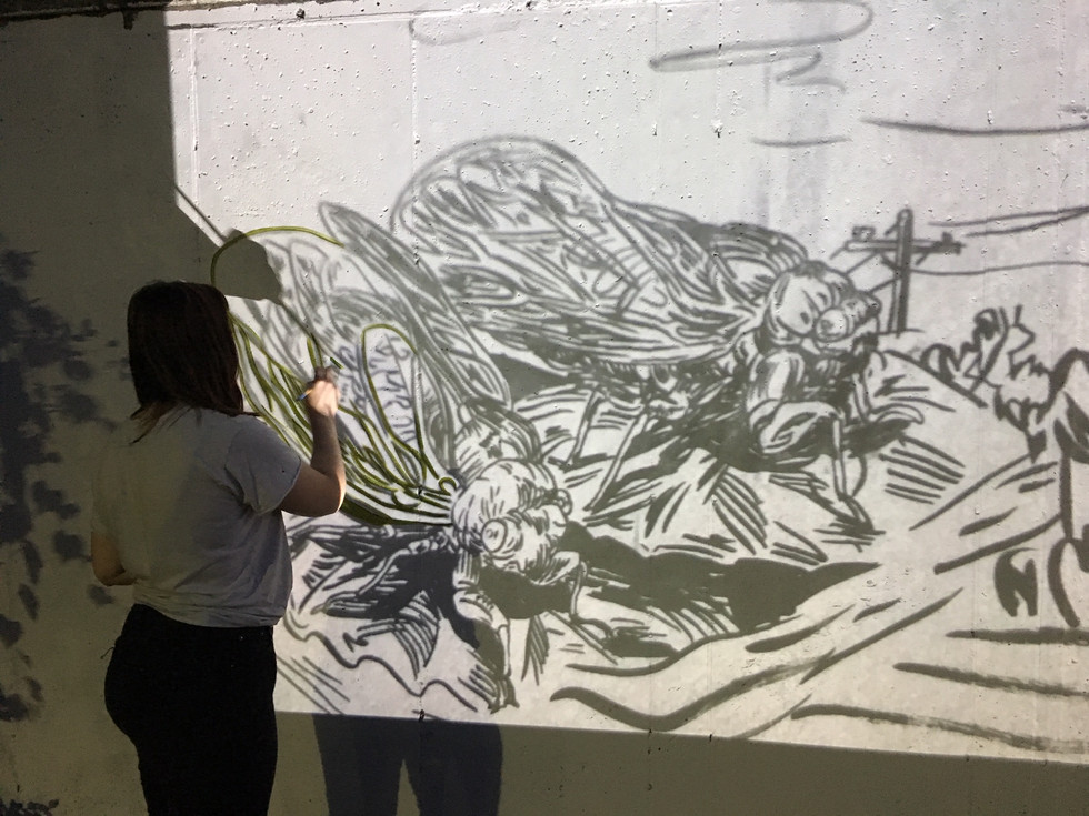 Mural projection