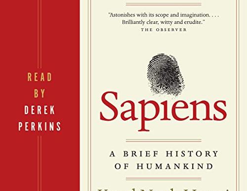 Sapiens rocks fiction