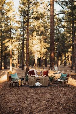 GiannaChristinaPhoto_Big_Bear_Wedding_Dr