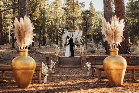GiannaChristinaPhoto_Big_Bear_Wedding_Dr