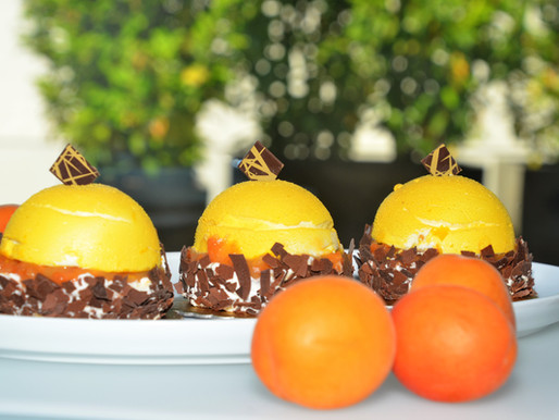 Verliebt in meine Marillen - Fruchtgenuss -Törtchen! Biskuit - Marille - Schokolade - Fruchtcreme