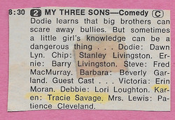 1969 TV GUIDE My Three Sons