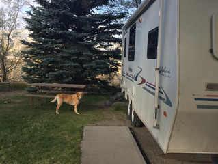 Travel Trailering With Your Dog, part 2