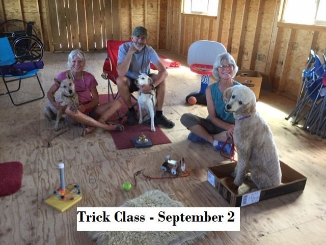 Trio of Tricksters - Redmond with Donna, Hayley with Henry, Jake with Jan