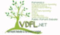 VDFL_logo(2).png