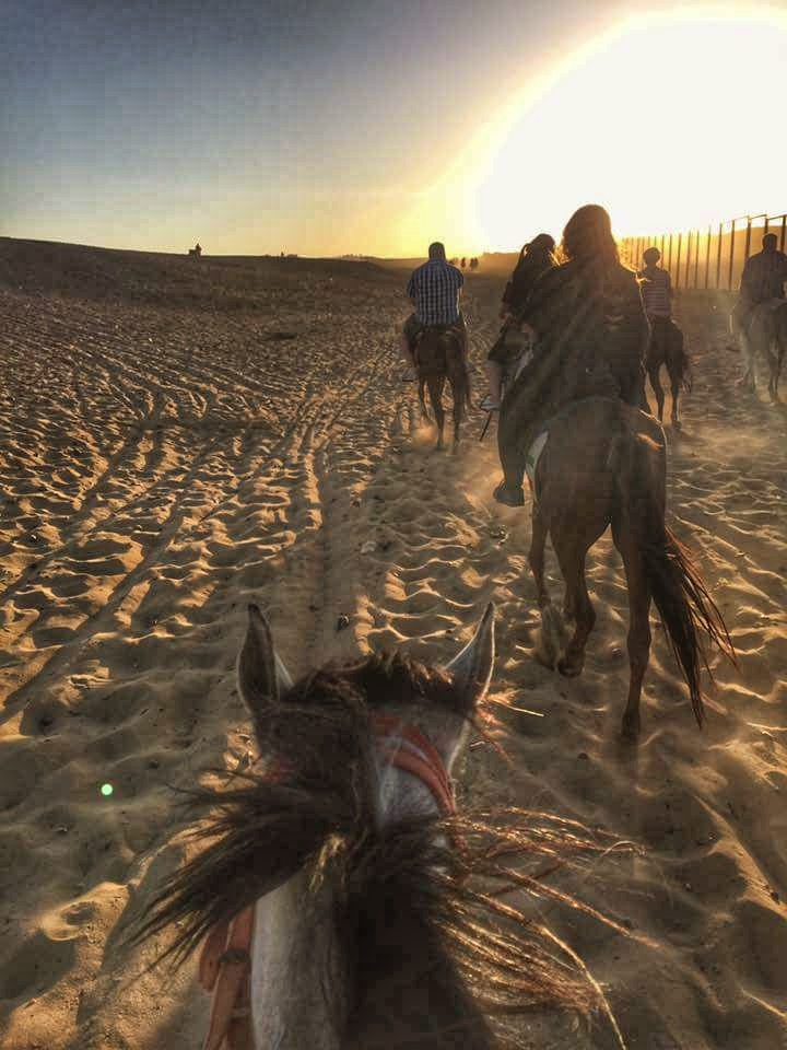 Riding Horse in Giza Desert