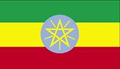 etiyopya bayrağı.png