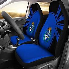car cover 7.jpg