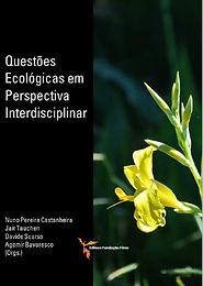 Questões Ecológicas em Perspectiva Interdisciplinar: Natureza e Sociedade no Antropoceno – Superando a Separação?