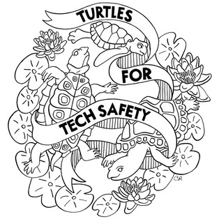 Turtles for Tech Safety 2017
