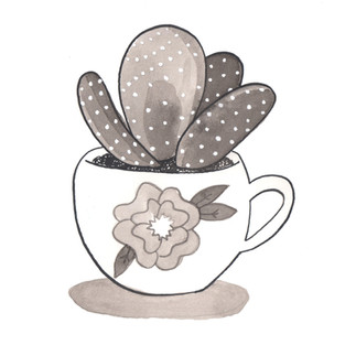 Cactus in a Tea Cup 2016