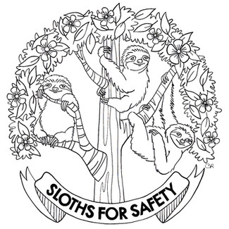 Sloths for Safety 2017