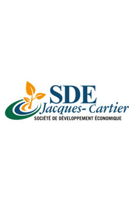 SDE-profil copy.jpg