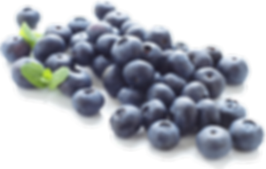 Blueberry-PNG-Clipart.png