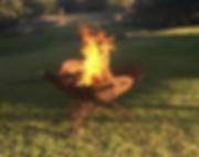 fire pitt.PNG
