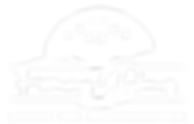 Faraway_Domes_Logo_White_NoBG.png