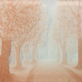 6 Avenia in mist.jpg