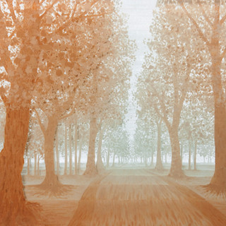 7 Avenia in mist.jpg