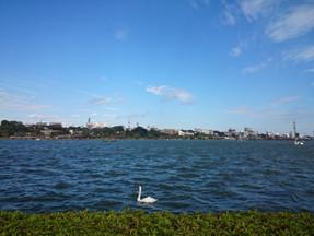 水戸市で「川床」が楽しめる!?【楽しい千波湖の限定イベント】