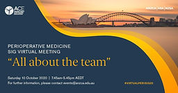 "2020 Perioperative Medicine SIG virtual meeting ""All about the team"" #VirtualPeriSIG20"