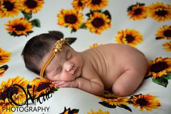 Annalise Newborn-8.JPG