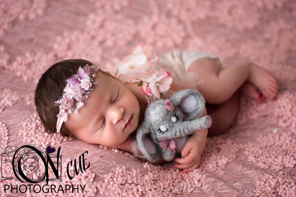 Nala Newborn-17.JPG