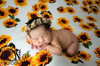 Annalise Newborn-16.JPG
