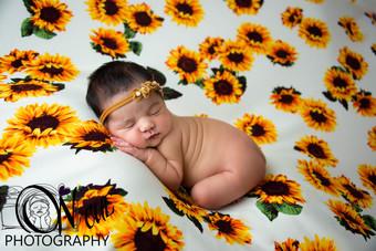 Annalise Newborn-2.JPG