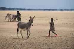 Roadtrip Niger