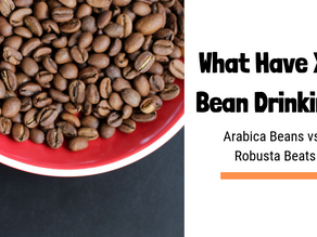 What Have You Bean Drinking? – Your Essential Guide to Coffee Species