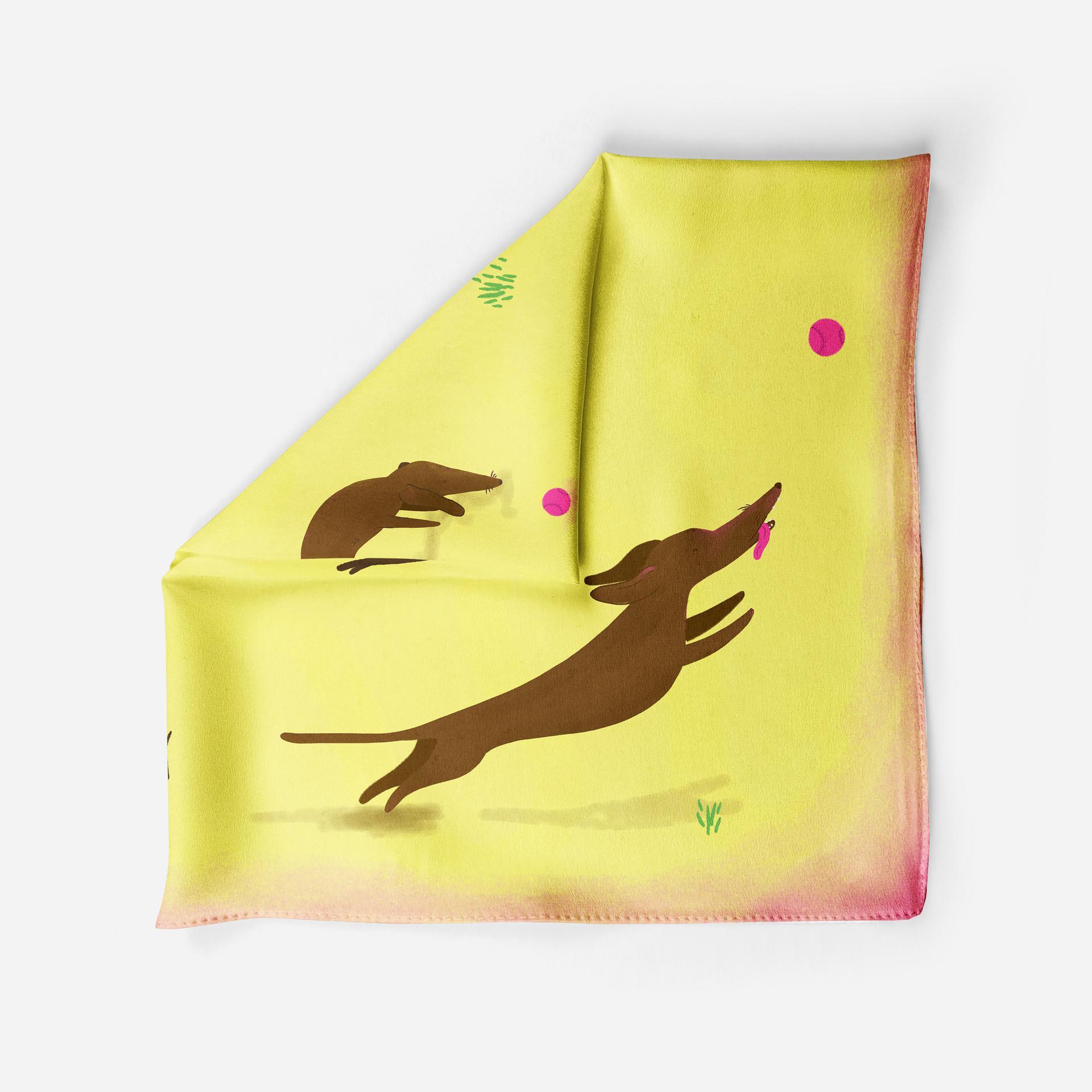 dash scarf 1.jpg