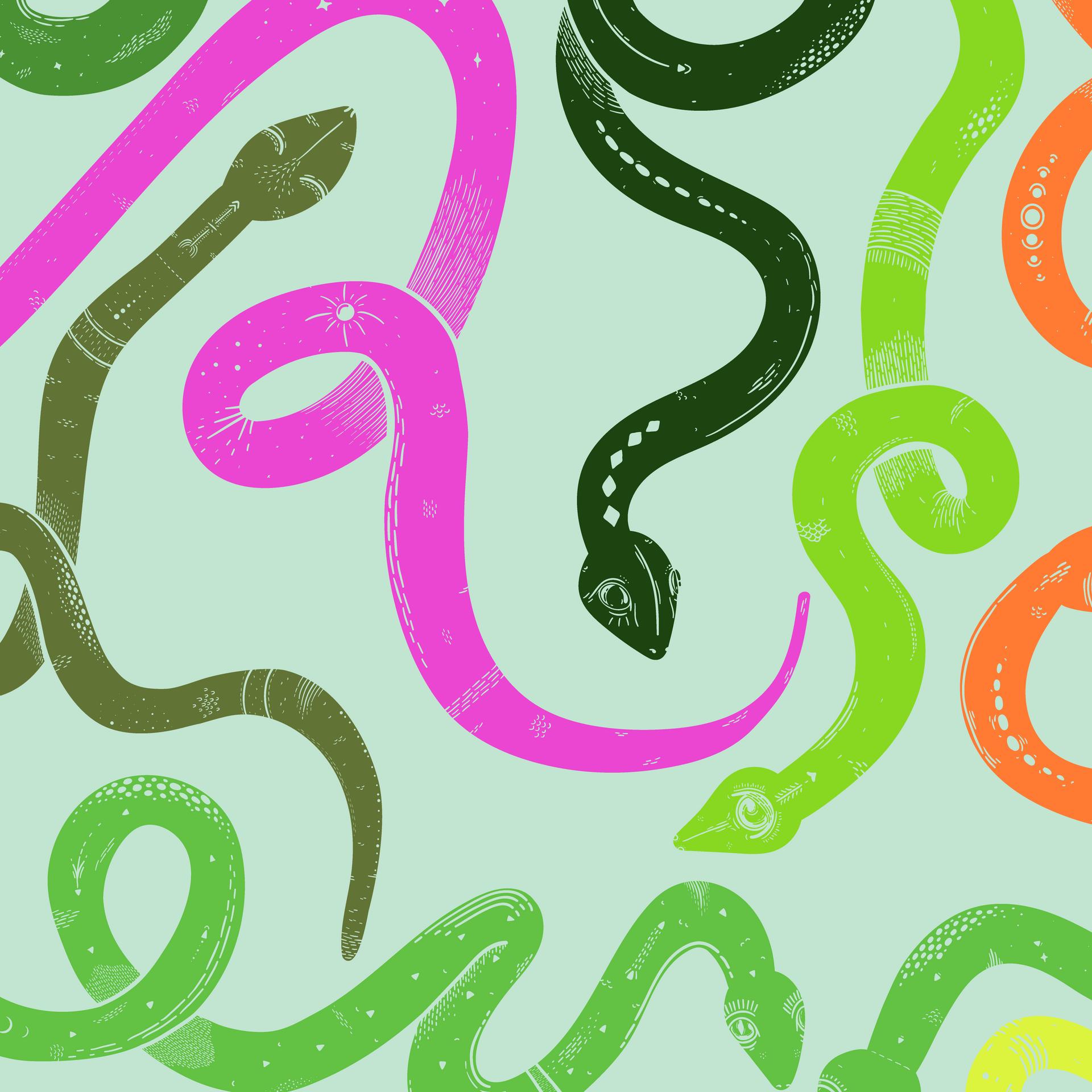 Snake Close Up 2
