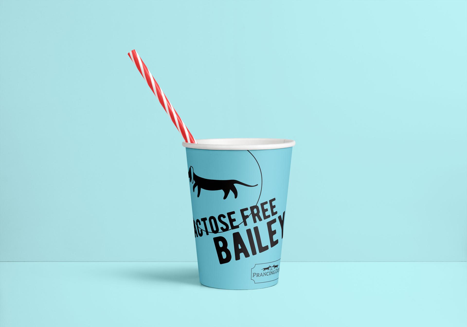 Baileys Cup