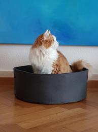 Modell Milo in anthrazit (matt)