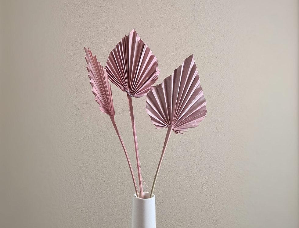 Palmblatt Speer, rosa , spitz