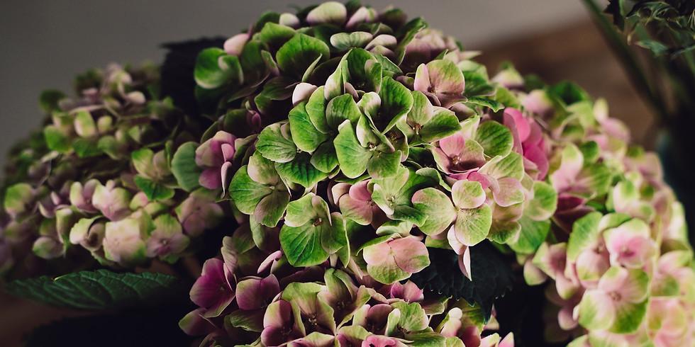 Herbstlicher Hortensien Türkranz